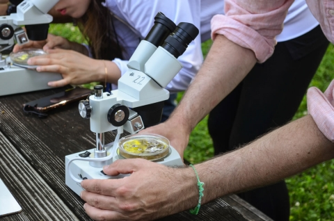 Food Under the Microscope - A 4-H Dare to Explore Event